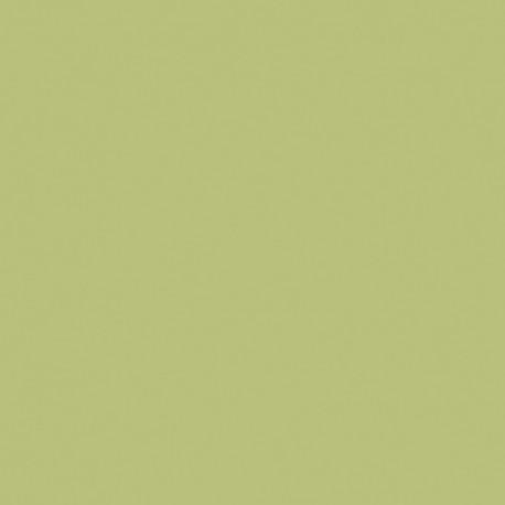 Formica HPL F3007 Pale Olive Matte (58)