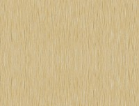 Formica HPL M2042 Brushed Gold Aluminium + folie