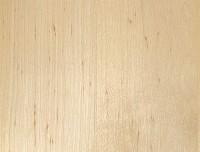 Elzen massief 3 lagen plaat met doorgaande lamel
