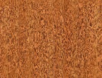 Formica HPL F2510 Golden Morning Oak MGN
