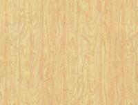 Formica HPL F7921 Birch Matte (58)