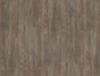 Formica HPL F8981 Bella Vista Oak SMT