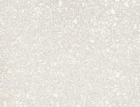 Formica HPL F5270 Geo White Matte (58)