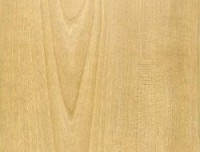 Formica HPL F5161 Golden Birch Matte (58)