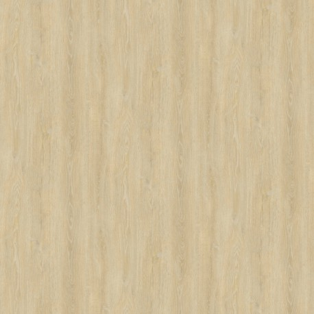 Clicwall      H784 W06 Robinson Oak Light Natural 70% PEFC